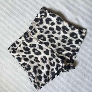 Leopard Highwaist Shorts