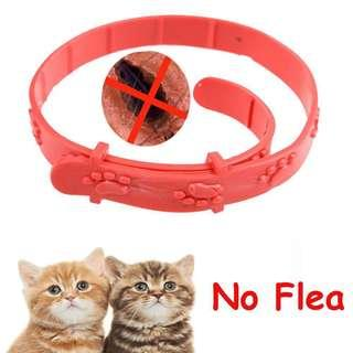 Pet Cat Anti Flea Collar INSTOCKS !
