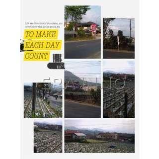 Dijual Tanah Cibogo Lembang