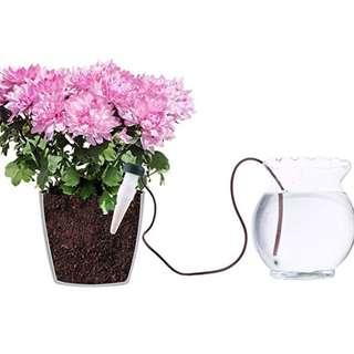 Self-Watering System for Houseplants