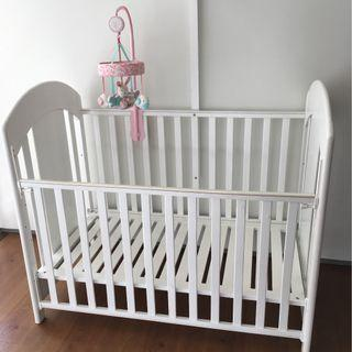 Baby box little equi preloved