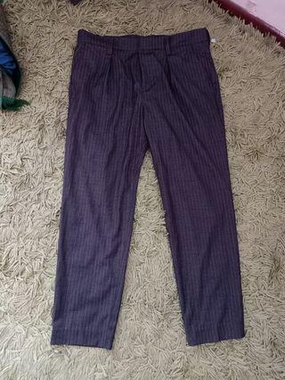 Straight ankle lenght pant