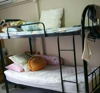 single bunkbed