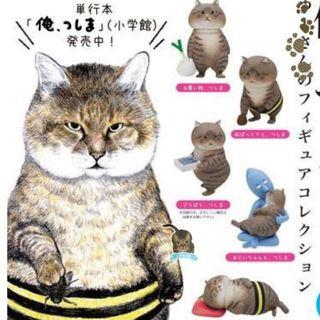 ☆預購☆日本大餅臉貓扭蛋