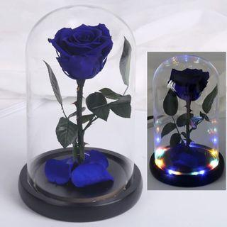 INSTOCK BLUE PRESERVED ROSE