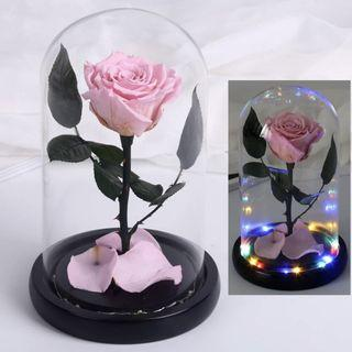 🚚 INSTOCK PINK PRESERVED ROSE W LIGHTS