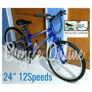 """24"""" 12Speed MTB / Mountain Bike * free upgrade to Aluminium Pedals! * Brand New SUNNY Bicycles"""