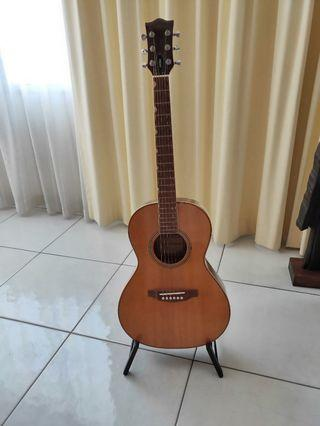 🚚 Synchromatic Acoustic Guitar