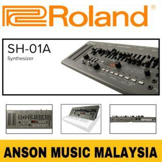 Roland SH-01A Synthesizer Module