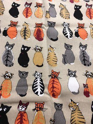 Kittens on khaki background