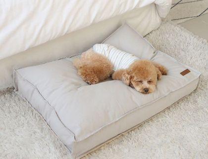 Dog Bed Waterproof