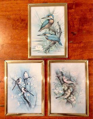 Birds Art Prints by Ruane Manning 3pc set