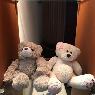 Cute teddy bear (dapat 2 pasang)