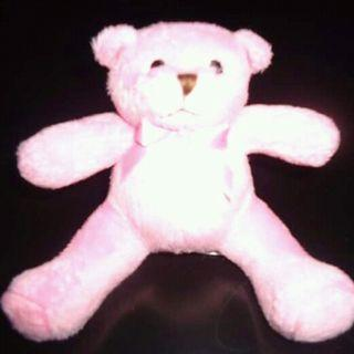 Cute Pink Bear Plush Toy