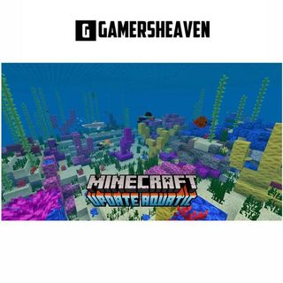 Rare Name Minecraft Premium Account, Toys & Games, Video Gaming