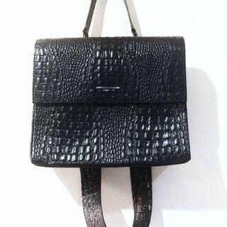 Aesthetic Pleasure Croco Bag