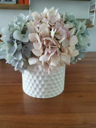 Hydrangeas with vase