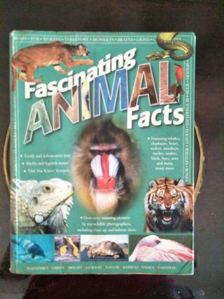 🚚 Animal facts book for children