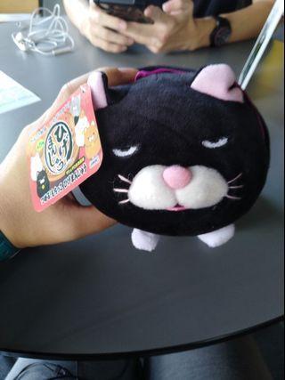 🚚 Lucky black cat