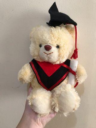 Boneka Teddy Bear GRADUATION