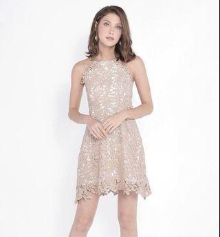 HVV HerVelvetVase Crochet Dress in Neutral / Khaki (Size S)