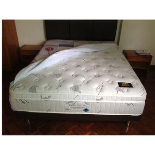 MAX COIL Silver Care Pedic Care IV Queen Mattress BED Divan