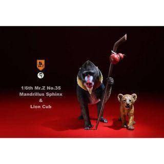 PRE-ORDER : MR.Z Real Animal Series No.35 - 1/6th Scale Mandrillus Sphinx & Lion Cub