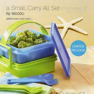 Tupperware Small Carry All Set