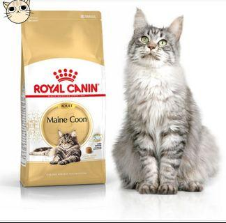 MAINECOON ADULT 10KG INSTOCK!!