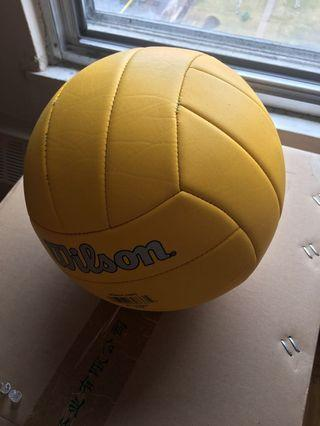 Volleyball (Yellow)