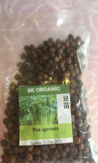 Be Organic Pea Sprouts Packet Seeds