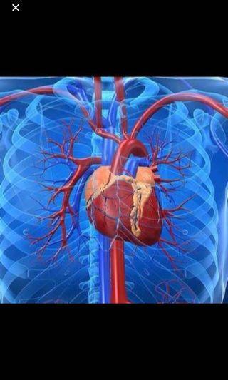 🚚 Quantum Bio Resonance Keep Cancer At Bay!