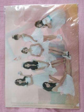 Apink Clear File