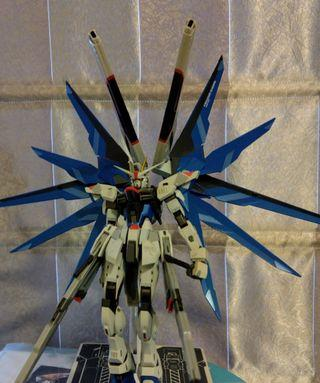 Metal build Freedom Gundam 自由高達