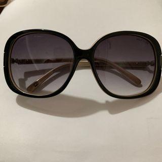 Hilfiger Sunglasses