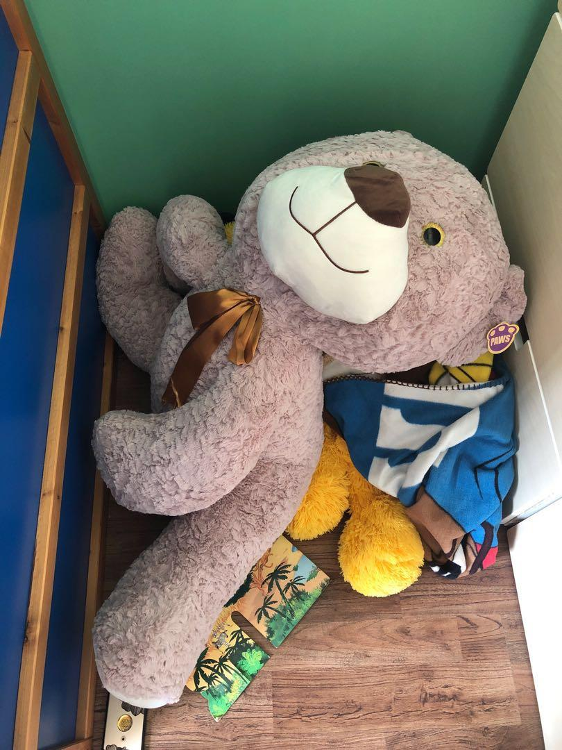 Giant Teddy Bear for Adoption (Free!)