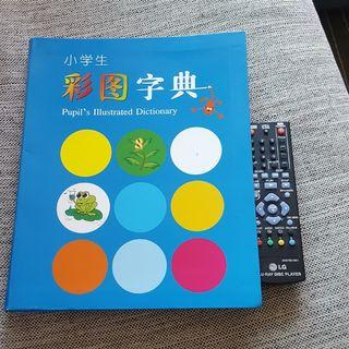 Chinese Dictionary with picture for children