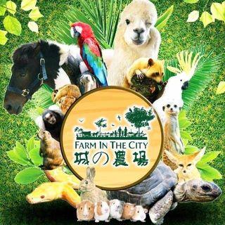 Farm in the City 2019