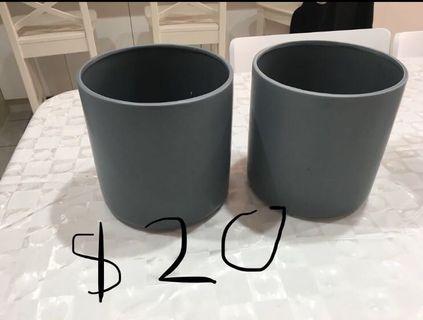 Grey pot plants