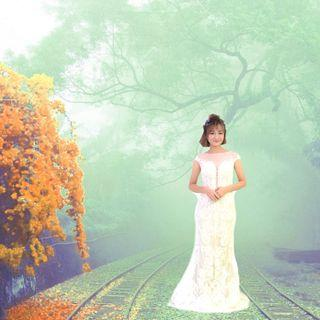 Wedding Gown Promotion