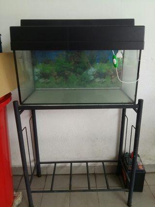 2 ft Aquarium