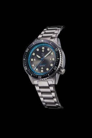 1000m Stainless Steel Dive Watch