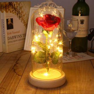 🚚 Hightone Enchanted LED Rose Flower Glass Dome