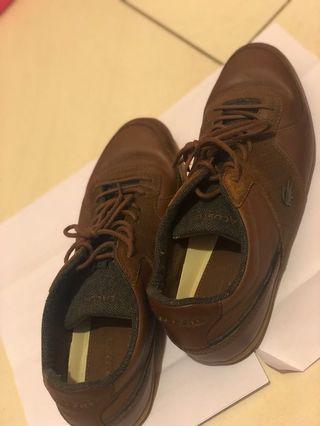 Lacoste Brown Sneaker