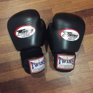 Twins Boxing Glove