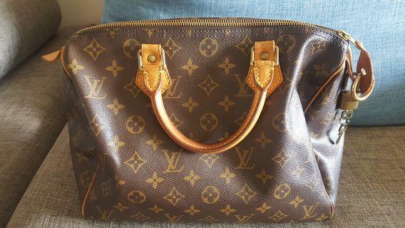 🚚 Louis Vuitton Bag