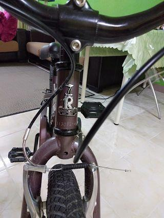Basikal Raleigh Junior
