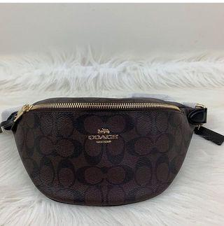 Coach Belt Bag in Signature Brown/Black