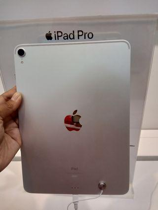 iPad Pro 11(inci)