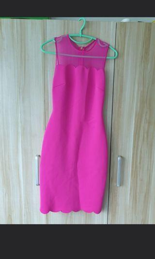 Authentic BNWT Ted Baker Fuchsia Dress